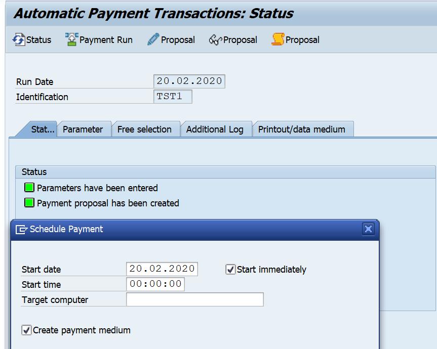 SAP F110 Payment Run Payment Medium