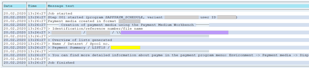 SAP Payment Run Log F110