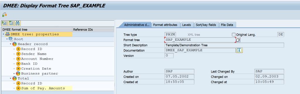 Structure of DME File and SAP Example