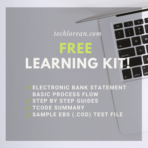 FREE SAP Electronic Bank Statement Learning Kit